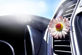 مراقبت زیبایی خودرو